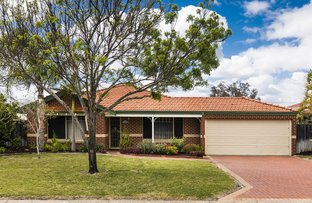 Picture of 38 Snow Wood Avenue, Ellenbrook WA 6069