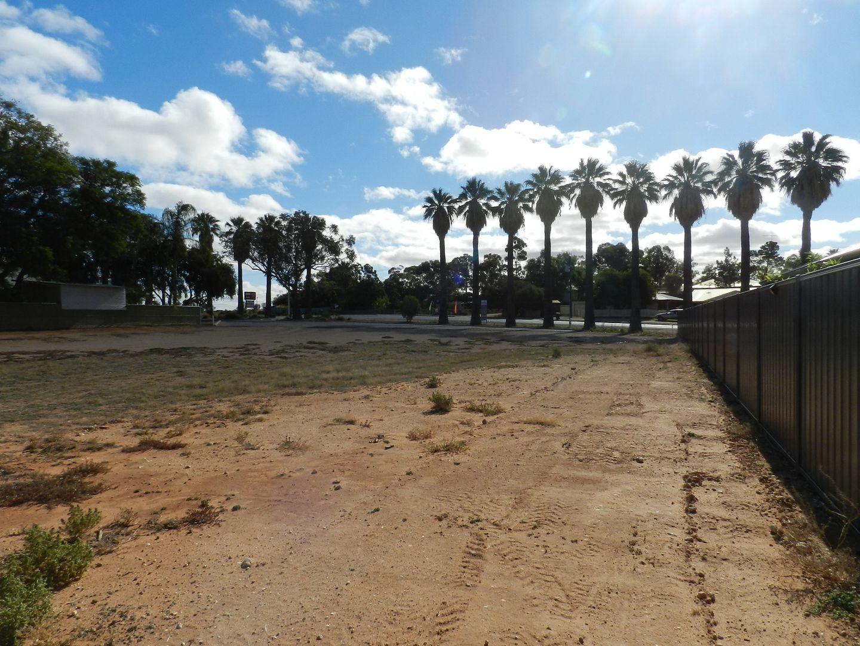 Section 1419, Old Sturt Highway, Berri SA 5343, Image 1