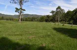 Picture of Conondale QLD 4552