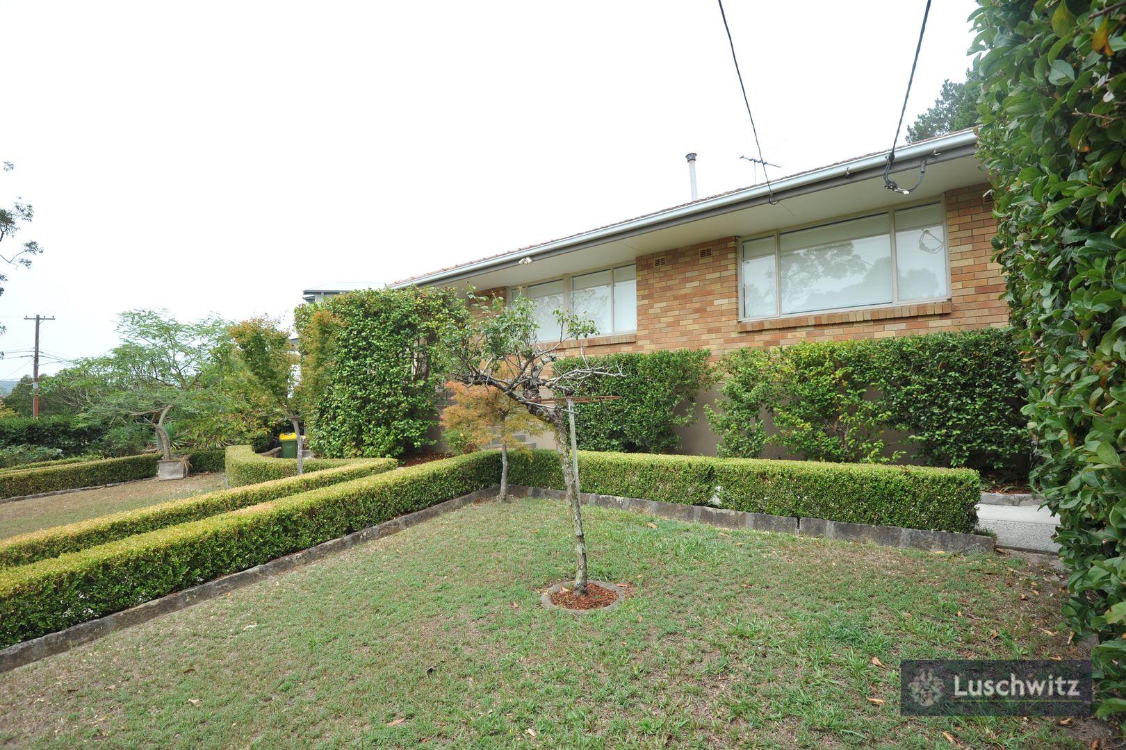 41 Allambie  Avenue, Lindfield NSW 2070, Image 0