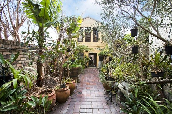 Picture of 157 Edgecliff Road, WOOLLAHRA NSW 2025