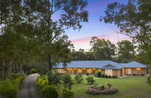 Picture of 22 Grey Gum Drive, Weston NSW 2326