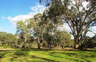 Picture of Lot 53 Henry Martin Road, Ashbourne SA 5157