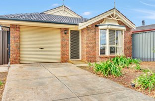 Picture of 32 Balmoral Circuit, Blakeview SA 5114
