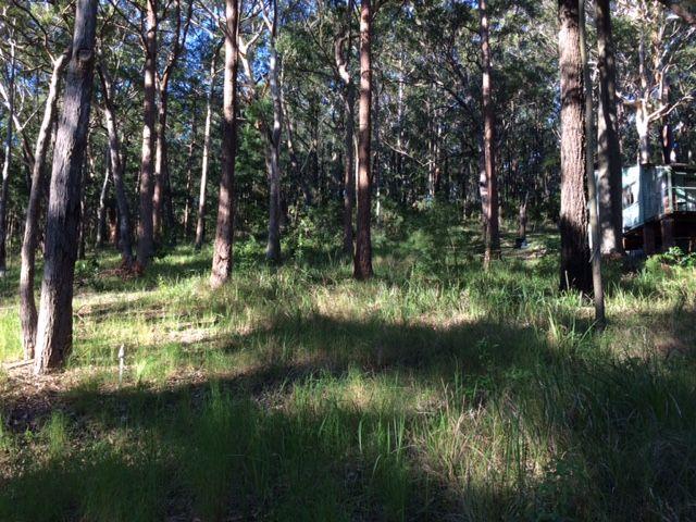 22/27 The Lakes Way, Tarbuck Bay NSW 2428, Image 0