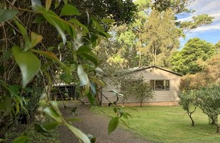 Picture of 56 Murramarang Road, Bawley Point NSW 2539