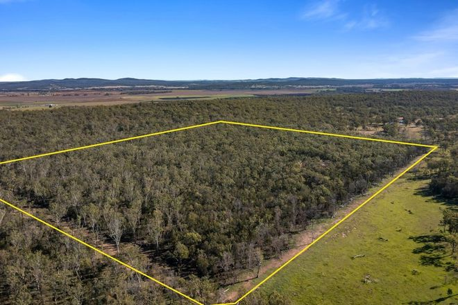 Picture of Lot 1 Harrigan Road, SANDY CAMP QLD 4361