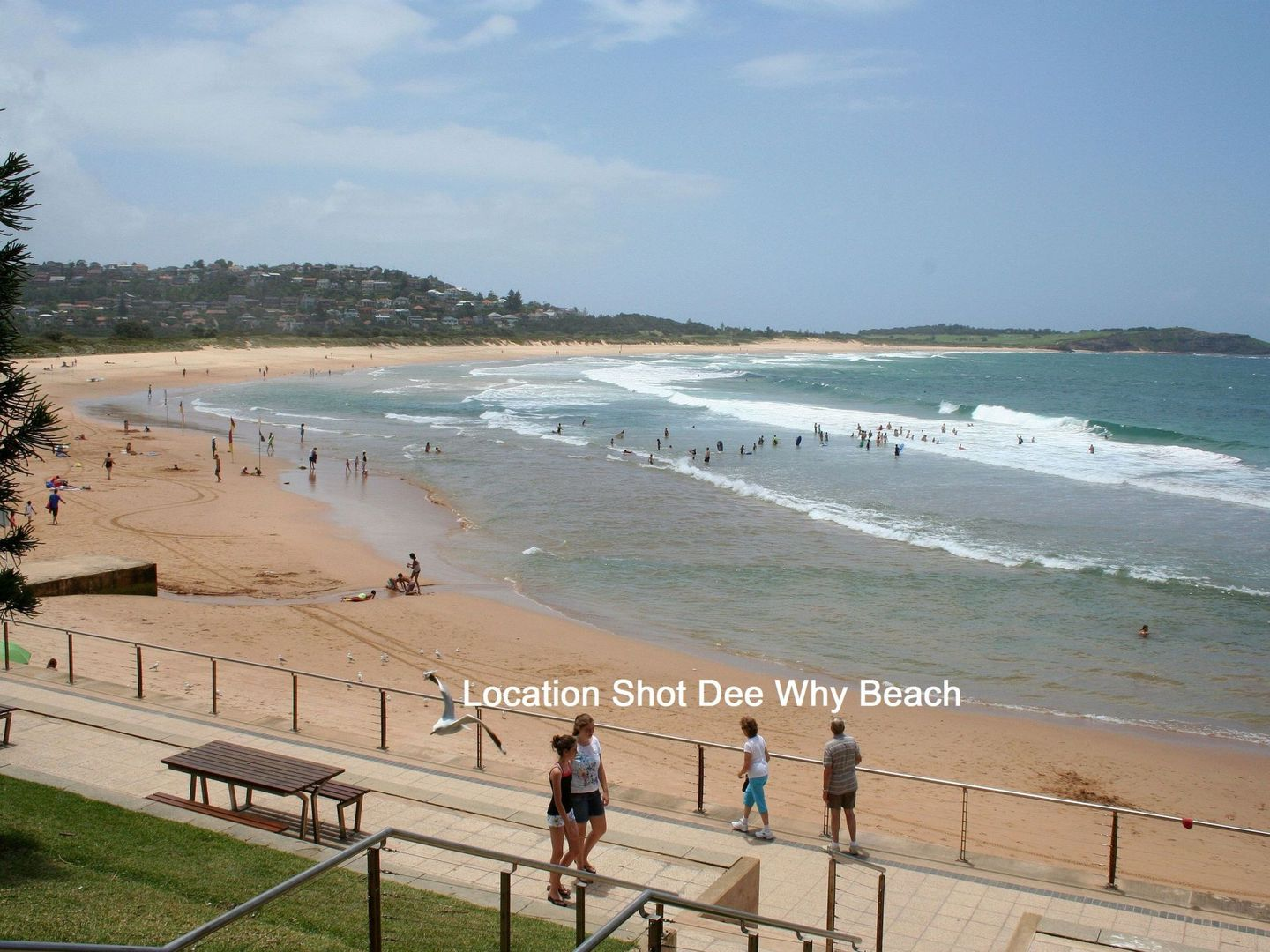 24/47 Pacific Parade, Dee Why NSW 2099, Image 2