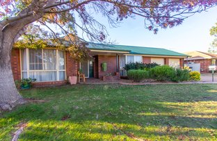 Picture of 19 Kiesling Drive, Narrandera NSW 2700