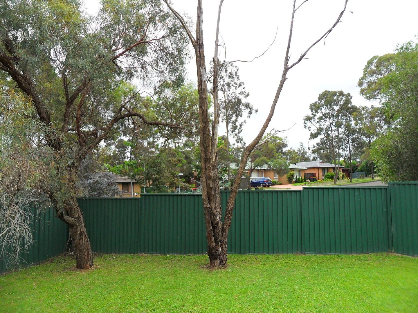 3 Coulman Street, Kings Park NSW 2148, Image 1