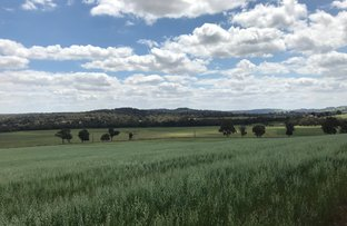 Picture of 5885 Great Northern Highway, Bindoon WA 6502