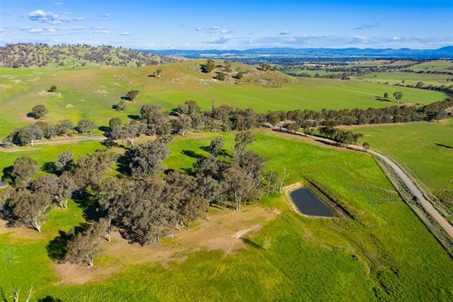 Picture of Elmarno/1141 Westby Road, PULLETOP NSW 2650