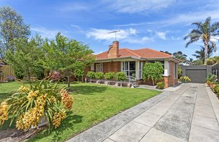 Picture of 80 Bulli Street, Moorabbin VIC 3189