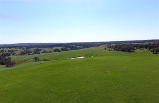 Picture of 670 Cape Clear -  Rokewood Road, Rokewood Junction VIC 3351