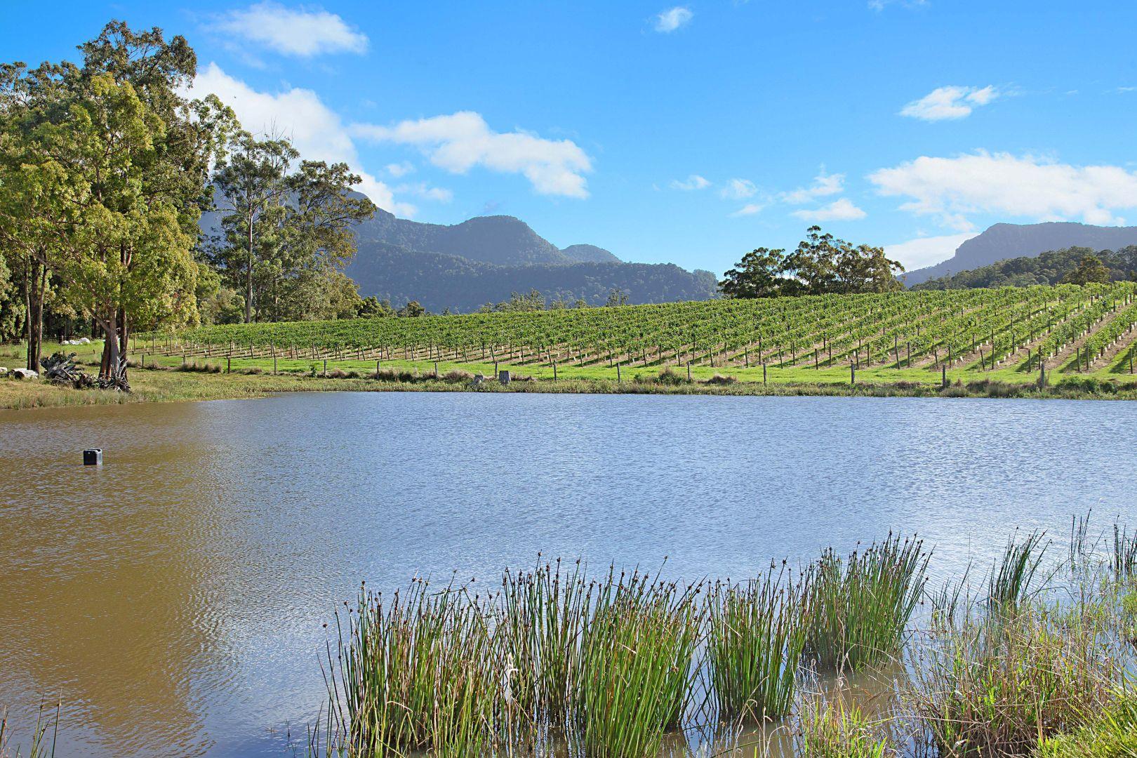 Hopkins Creek NSW 2484, Image 1