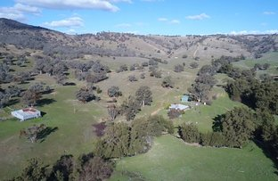 Picture of 2244 Greenmantle Road, Bigga NSW 2583