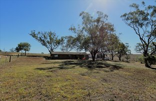 Picture of 101 Tullong Road, Scone NSW 2337