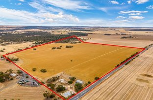 Picture of 221 Chaunceys Line Rd, Hartley SA 5255