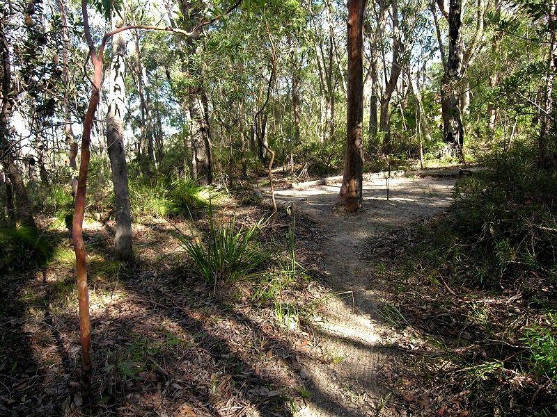85 Genevieve Road, Bullaburra NSW 2784