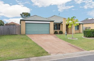 Picture of 4 Caz Court, Upper Coomera QLD 4209