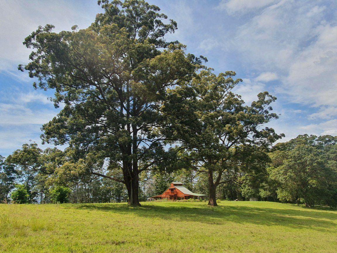897 O'Neil Rd, Bentley NSW 2480, Image 0