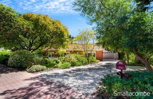 Picture of 72 Quinlan Avenue, St Marys SA 5042