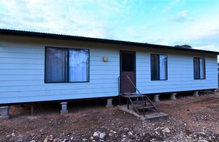 Picture of 4287 Stott Highway, Fisher via, Swan Reach SA 5354