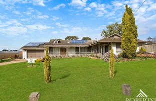 Picture of 3 Goodall Street, Warrnambool VIC 3280