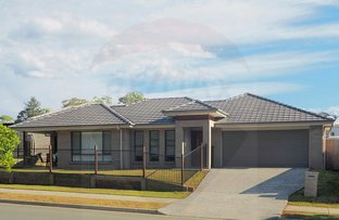 Picture of 29 Wollombi Avenue, Ormeau Hills QLD 4208