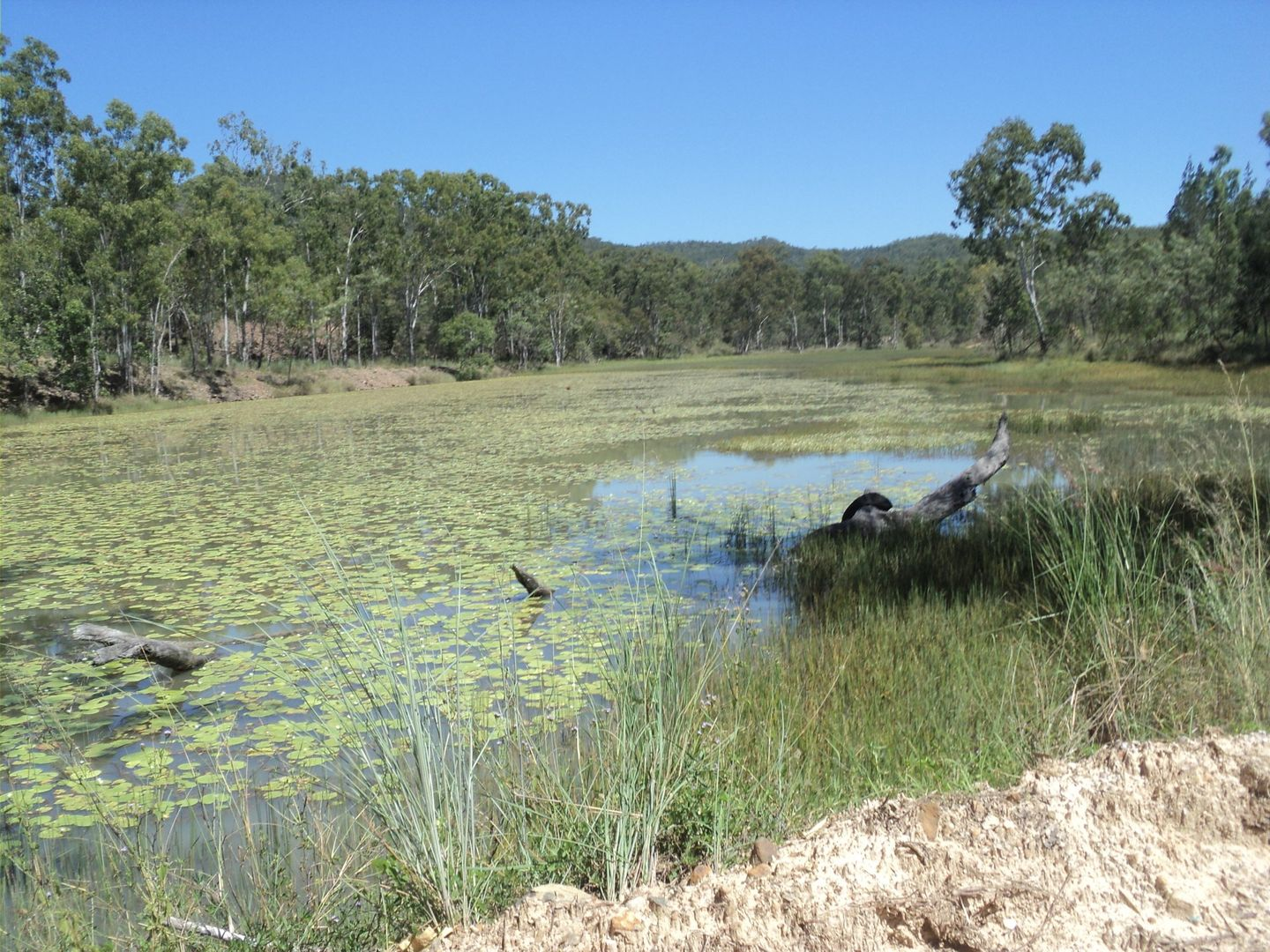 Silver Valley QLD 4872, Image 2