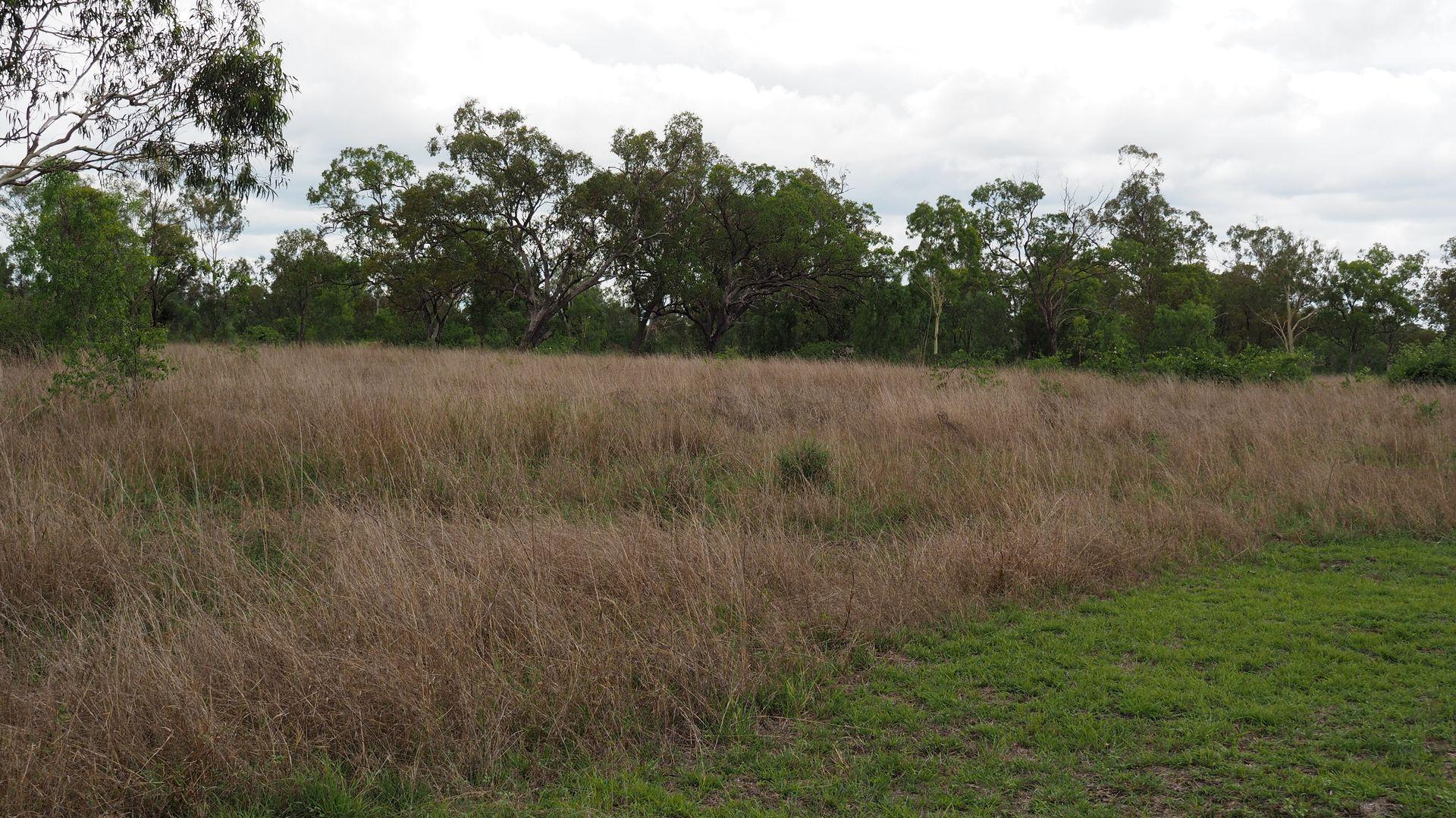 198A Boys Road, Alton Downs QLD 4702, Image 0