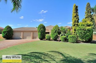 Picture of 26 Chardonnay Drive, The Vines WA 6069