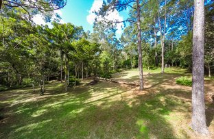 Picture of 29-31 Crescent Road, Eumundi QLD 4562