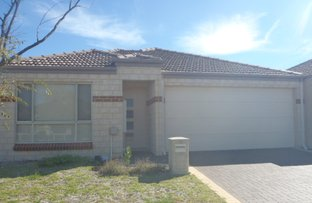 Picture of 12 Dulegal Way, Aveley WA 6069