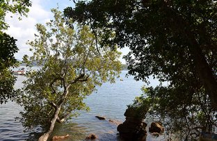 Picture of Lot 60 Little Wobby Beach, Little Wobby NSW 2256