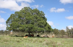 Picture of New Moonta QLD 4671