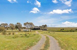 Picture of Lot 2 Lindsay Park Road, Moculta SA 5353