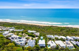 Picture of 6/512 David Low  Way, Castaways Beach QLD 4567