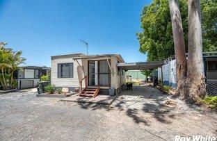 Picture of 289/99 Aquatic Road, Darawank NSW 2428