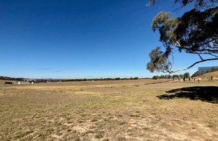 Picture of Lot 3 - 88 Ducks Lane, Goulburn NSW 2580