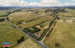 Picture of 438 Plains Road, Hoskinstown NSW 2621