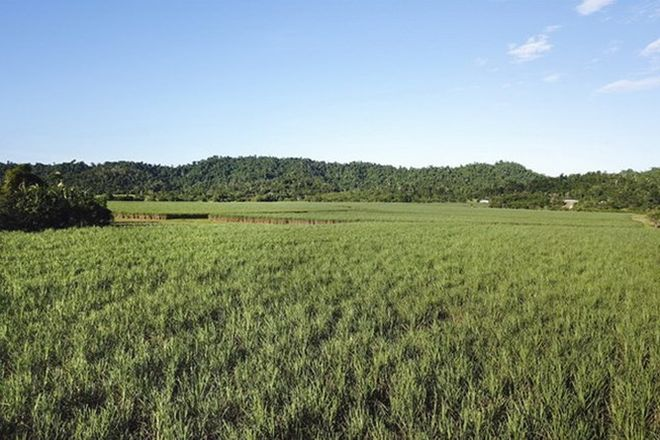 Picture of EAST FELUGA QLD 4854
