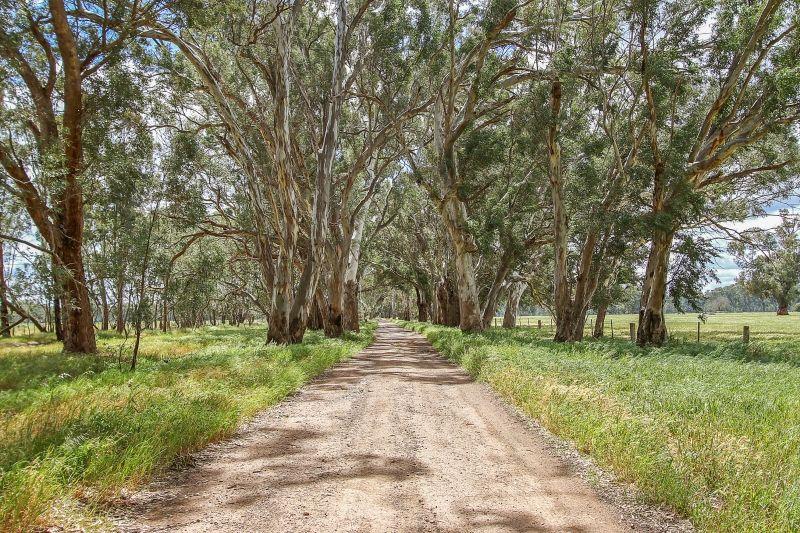 2 Goomalibee Road, Benalla VIC 3672, Image 1
