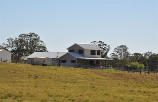 Picture of 829 Muscle Creek Rd, Muswellbrook NSW 2333
