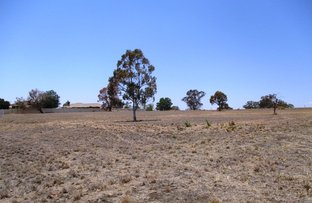 Picture of Lot 7 Oakland Lane, Inverell NSW 2360