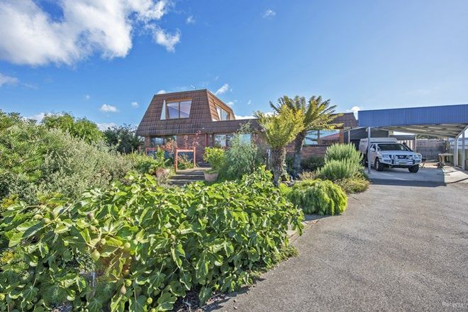 Picture of 20 Pineleigh Street, PENGUIN TAS 7316