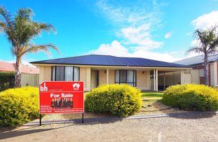 Picture of 3 Bunyip Way, Mannum SA 5238
