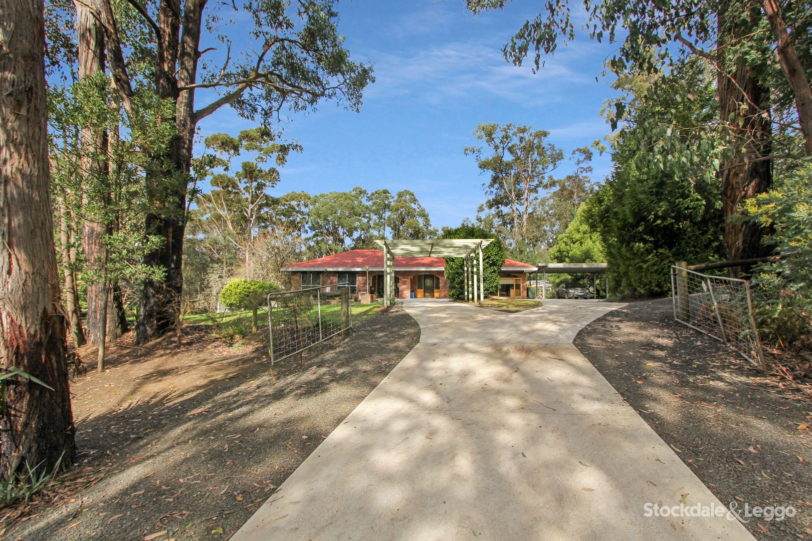 162 Darlimurla Road, Mirboo North VIC 3871, Image 0