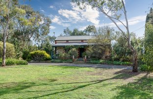 Picture of 48 Marchant Road, Strathalbyn SA 5255