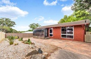 Picture of 14 Launceston Avenue, Banksia Park SA 5091